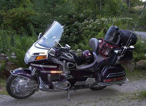 Goldwing 01