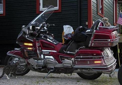 Goldwing 02