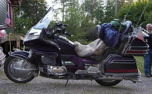 Goldwing 03