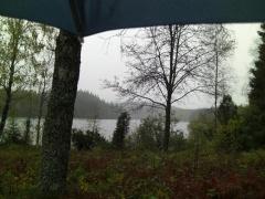 Regenwetter 5. Oktober 2008