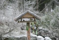 Vogelhaus 5