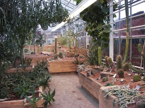 Botanischer Garten Göteborg 1
