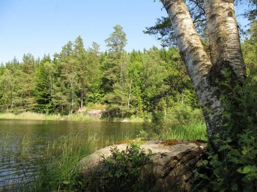 Am Gärdesjön