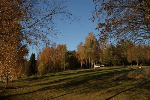 Herbstspaziergang am Navåsen01
