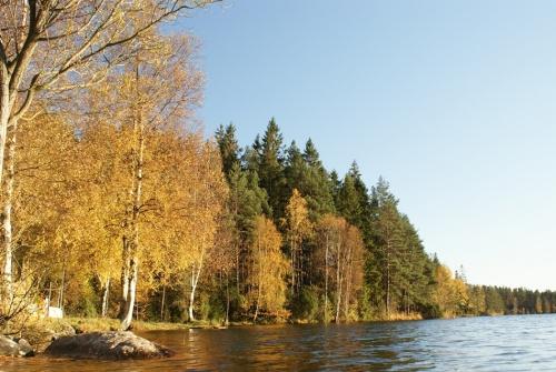 Herbstspaziergang am Navåsen02
