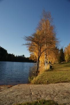 Herbstspaziergang am Navåsen04