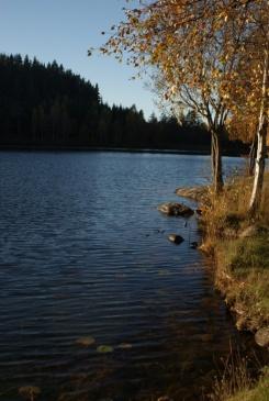 Herbstspaziergang am Navåsen08