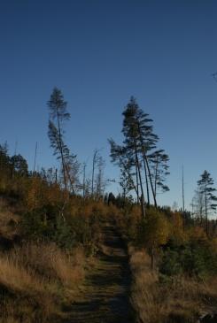 Herbstspaziergang am Navåsen10