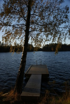 Herbstspaziergang am Navåsen13