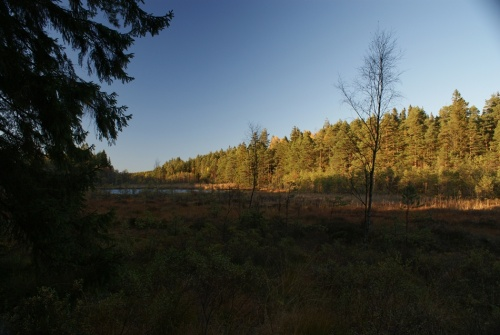 Herbstspaziergang am Navåsen17