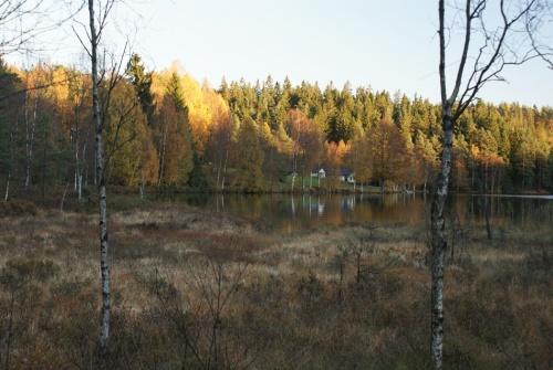 Herbstspaziergang am Navåsen21