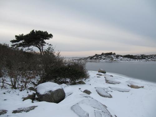 WInterspaziergang an der Küste 1