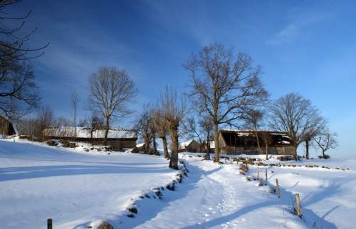 Winter in Äskhults By 3