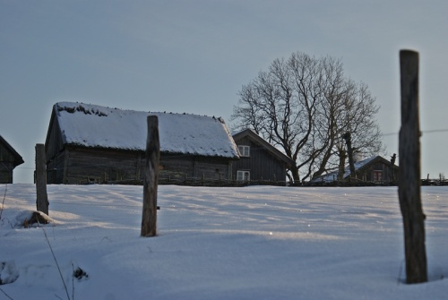 Winter in Äskhults By 14