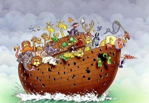 Arche Noah in Gefahr...