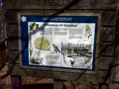 Ausflug ins Naturreservat