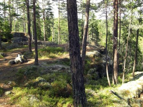 Troll-Märchen-Land