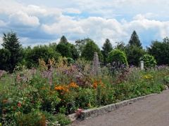 Botanischer Garten Uppsala 04