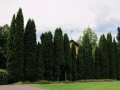 Botanischer Garten Uppsala 05