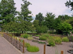 Botanischer Garten Uppsala 06