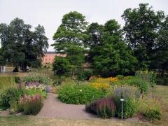 Botanischer Garten Uppsala 10