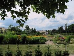 Botanischer Garten Uppsala 13