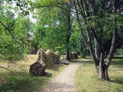 Botanischer Garten Uppsala 20