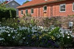Botanischer Garten Göteborg 03