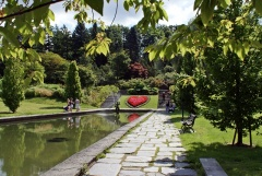 Botanischer Garten Göteborg 04