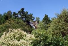 Botanischer Garten Göteborg 14