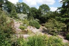 Botanischer Garten Göteborg 15