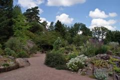 Botanischer Garten Göteborg 22