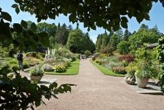 Botanischer Garten Göteborg 27