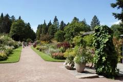 Botanischer Garten Göteborg 28