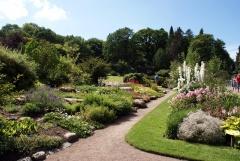 Botanischer Garten Göteborg 29