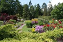 Botanischer Garten Göteborg 38