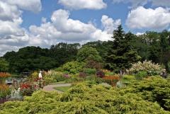 Botanischer Garten Göteborg 39