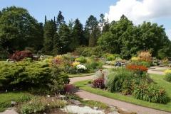 Botanischer Garten Göteborg 40