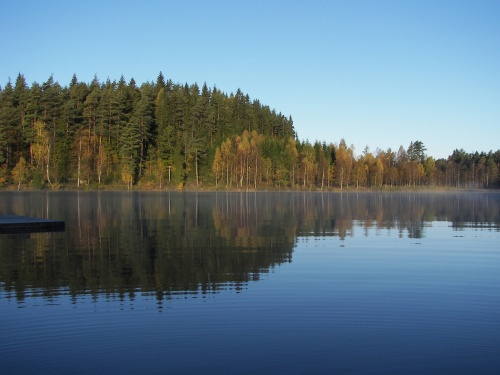 Herbstmorgen am See