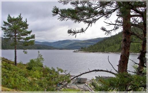 am norwegischen Fjord
