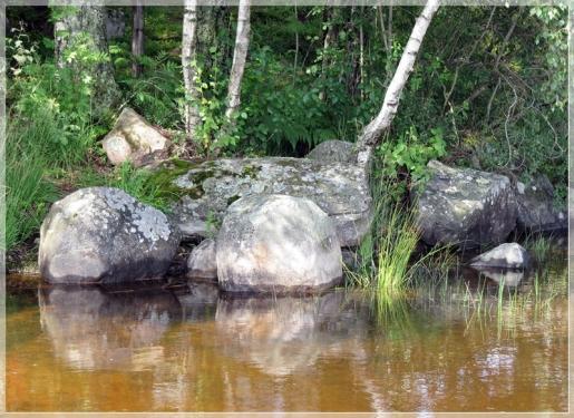 Steine am Ufer...