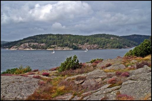 Borgilefjorden