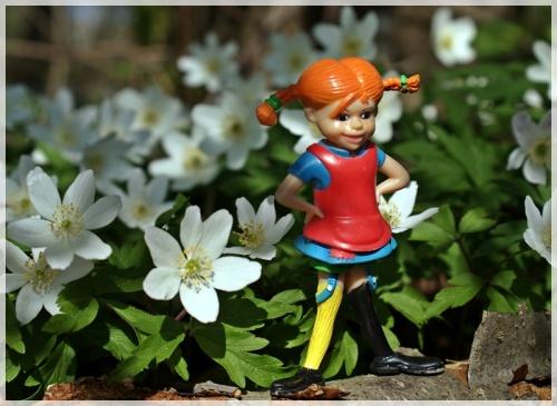 Pippi mit Buschwindröschen