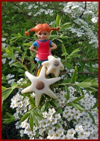 Pippi mit Quirlen 1