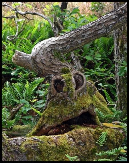kleiner Waldgeist