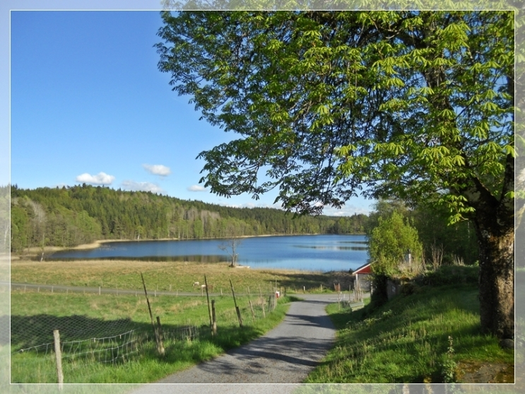 Unser See 4