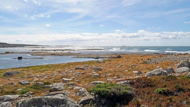 Biskopshagens Naturreservat Väröbacka 08