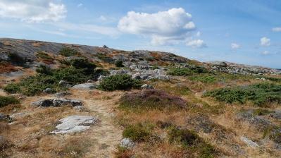 Biskopshagens Naturreservat Väröbacka 16