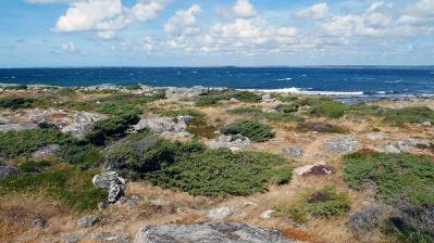 Biskopshagens Naturreservat Väröbacka 17