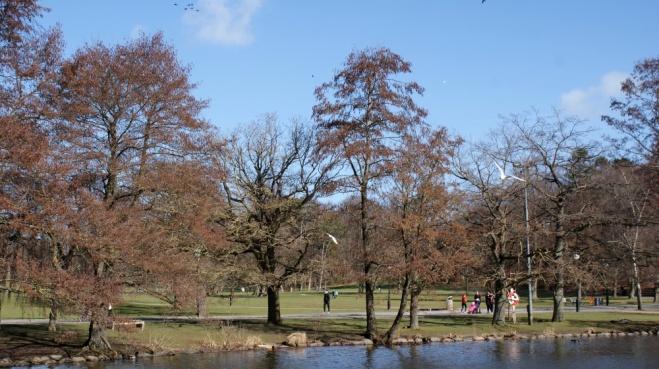 Slottskogen 03